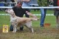 Stella wird zweite in Aichach